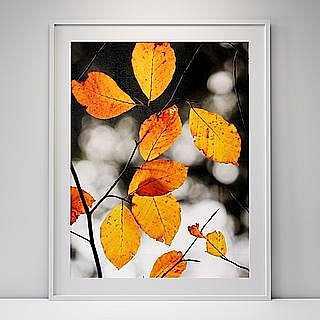 Set of leafs